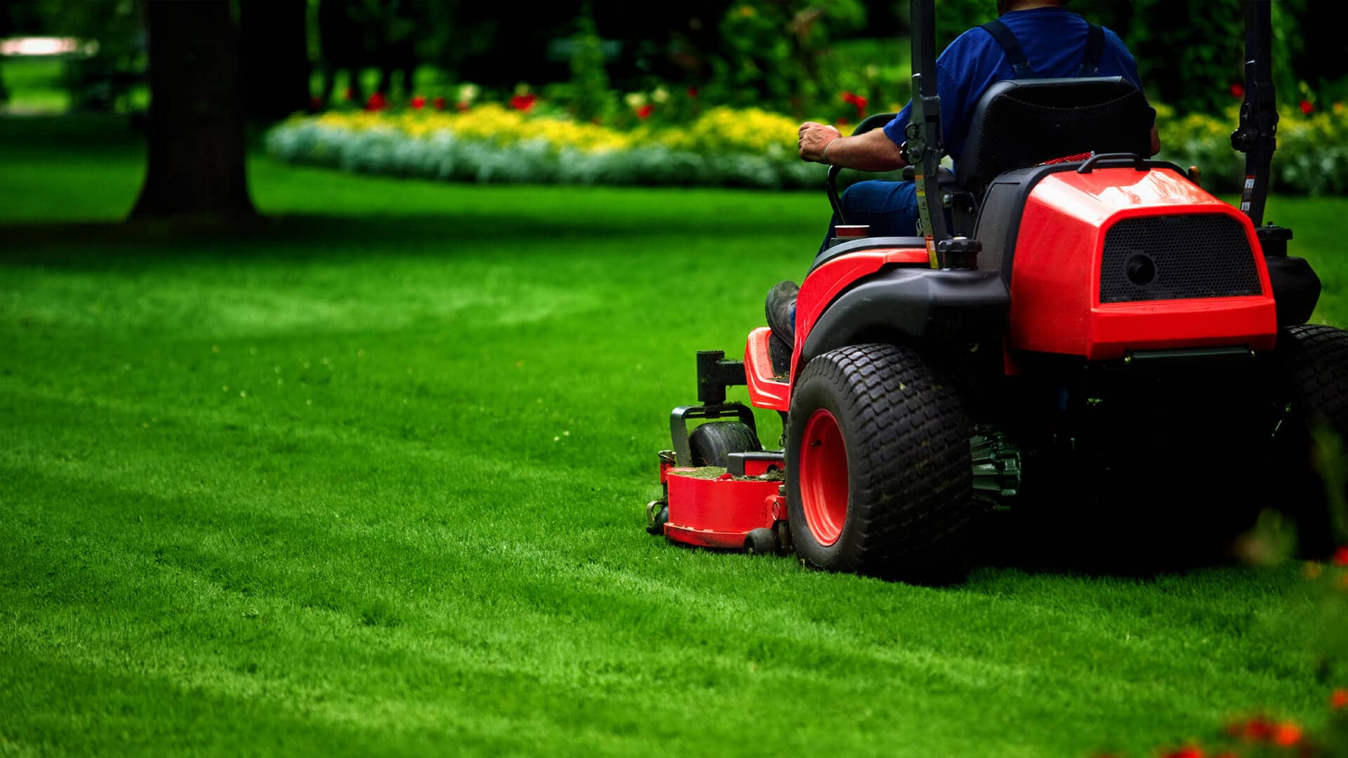 Top 12 Best Lawn Mower: 2020 Reviews & Buying Guide 1